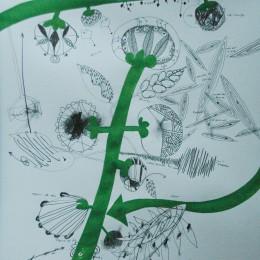 Calea 17 - creion carton - 18, 24 cm
