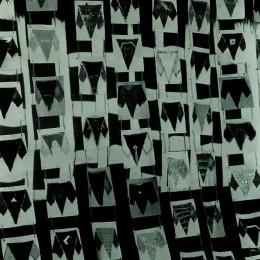 Camasa mistica  - acrilic panza sfoara  - modul 8,8 cm